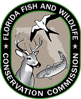 logo-fwc (1).png