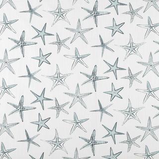 Starfish - Harbor