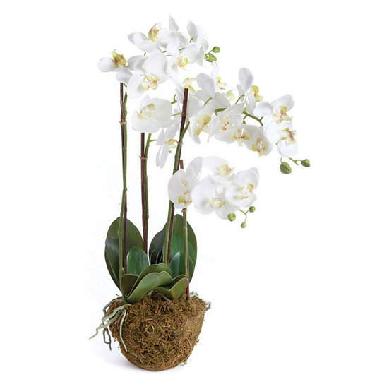 30 inch orchid phalaenopsis drop-in