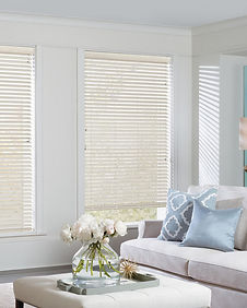 Hunter Douglas Everwood wood alternative horizontal blinds in living room