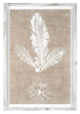 Nature on Linen I