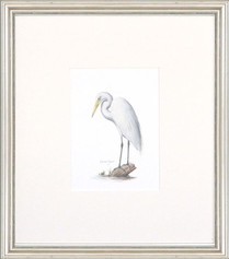 Petite Bird Print - Great Egret
