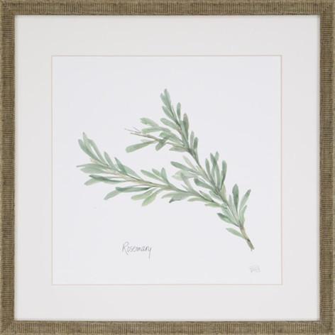 Watercolor Herb Print - Rosemary