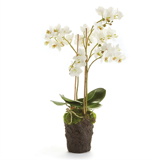 20 inch tall faux orchid drop in floral in white