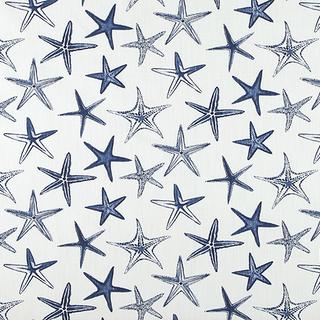 Starfish - Vista