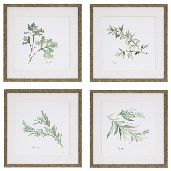 Framed Herb Wall Art