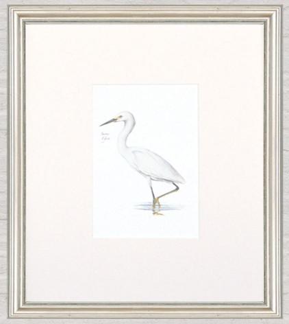 Petite Bird Print - Snowy Egret