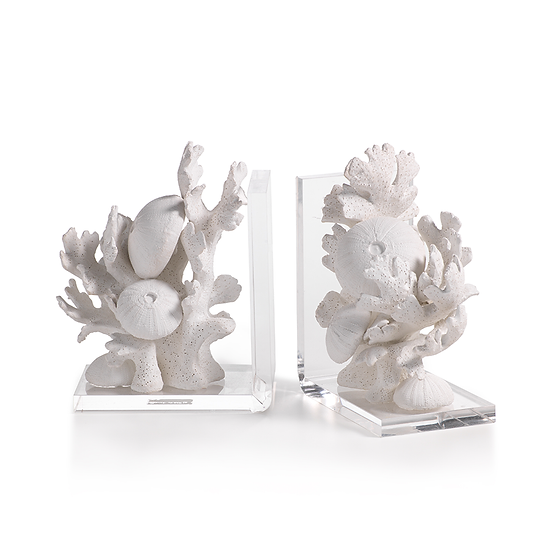 Coral and sea urchin bookend in white with a clear acrylic base