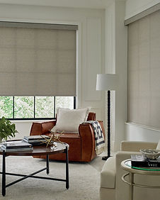 Hunter Douglas custom designer roller shade window treatments in living room