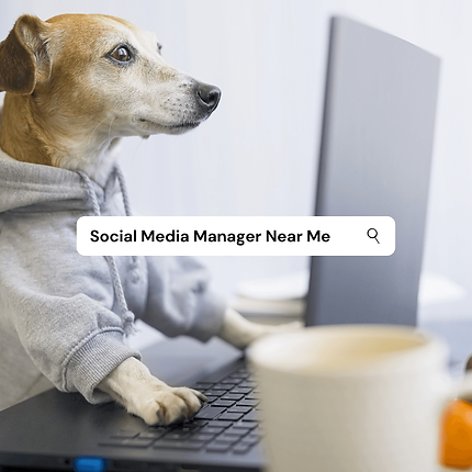 Uniquely-Powerful-Social-Media-Manager-N