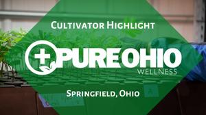 Ohio Marijuana Card Cultivator Highlight: Pure Ohio Wellness