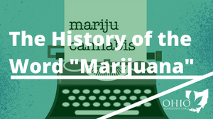 Marijuana vs. Cannabis