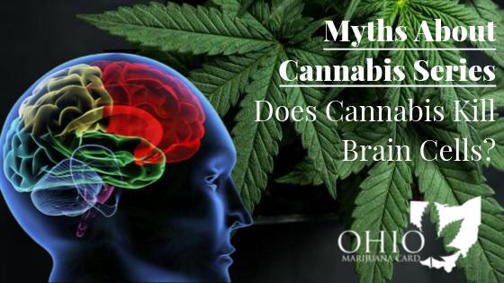 Myths About Cannabis - Does Cannabis Kill Brain Cells?