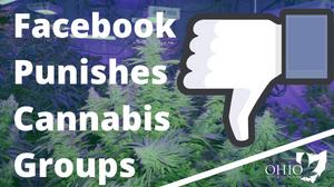 Facebook Shadowbans Cannabis Groups