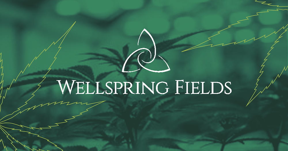 Wellspring Fields first to introduce Rick Simpson Oil (RSO)