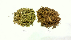 Normal cannabis flower vs. decarboxylated cannabis