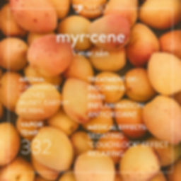 What is myrcene? | Ohio Marijuana Card