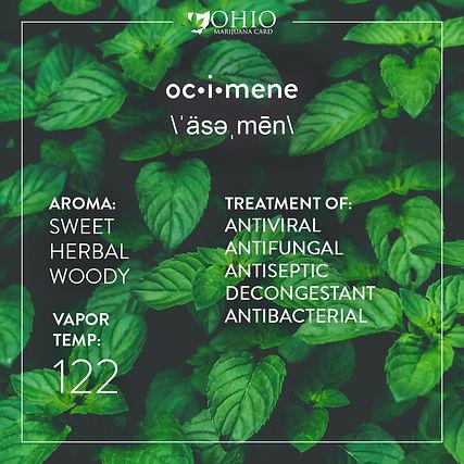 What is ocimene? | Ohio Marijuana Card