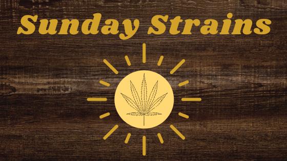 image of a sunshine with a marijuana leaf on the inside