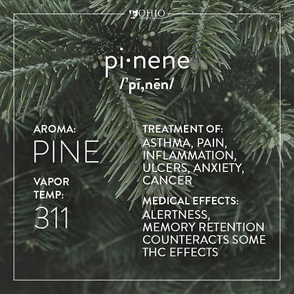 What is pinene? | Ohio Marijuana Card