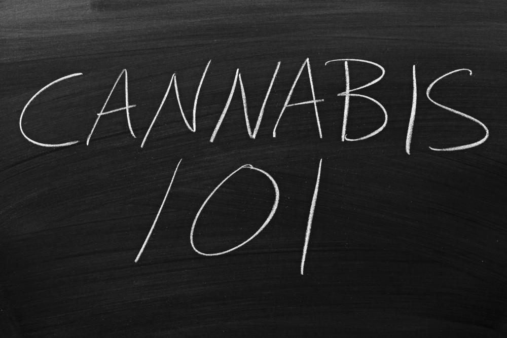 Cannabis 101 Written on a Chalkboard