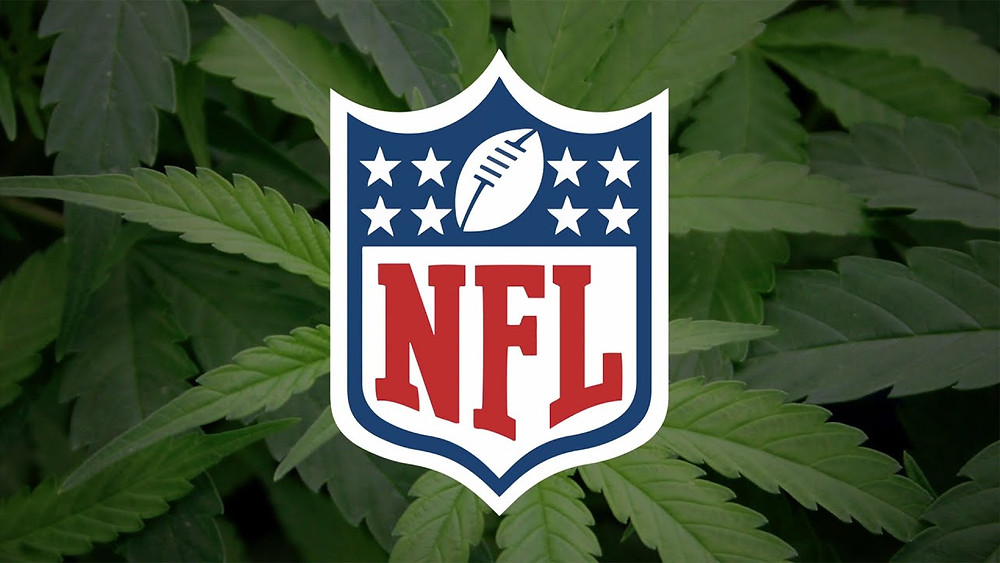 image of NFL logo placed in front of cannabis plant in the background