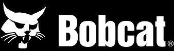 Bobcat (2).jpg