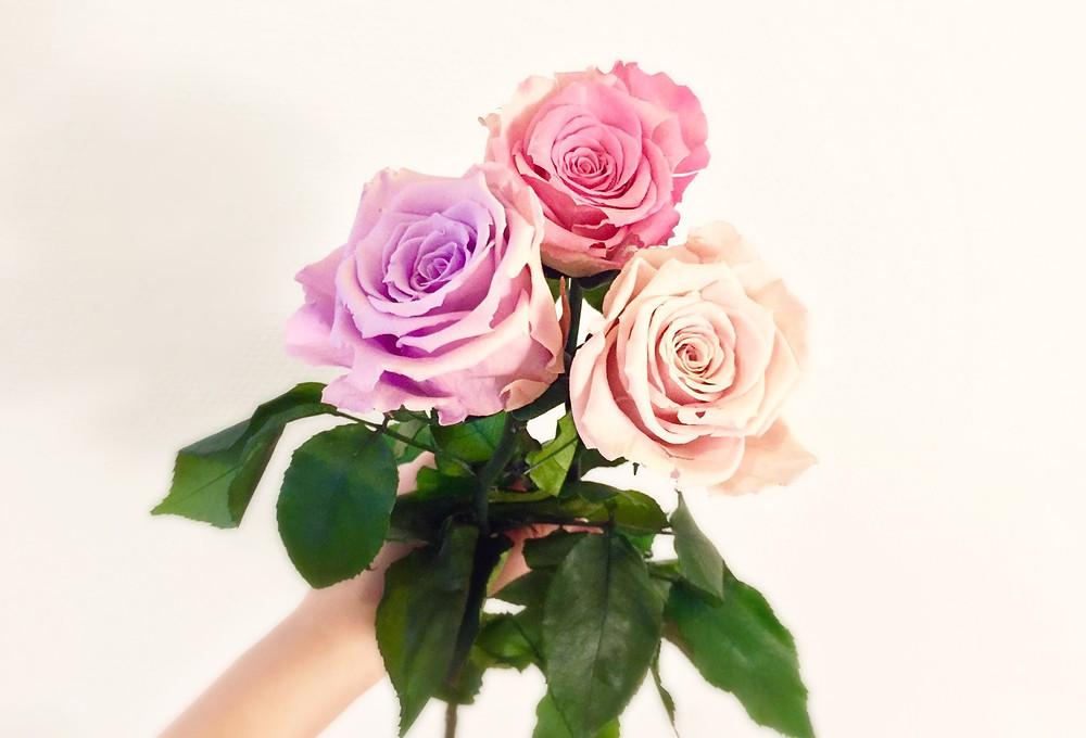 Konservierte Rosen für mehr Achtsamkeit