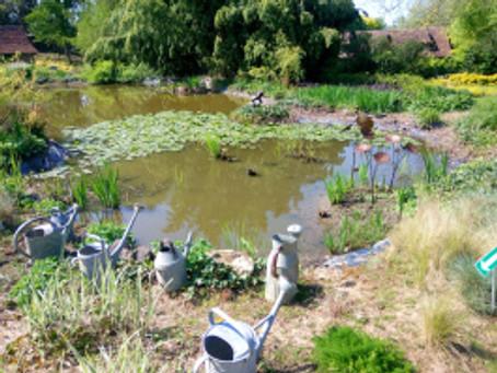 L'un des plus beaux jardins de France