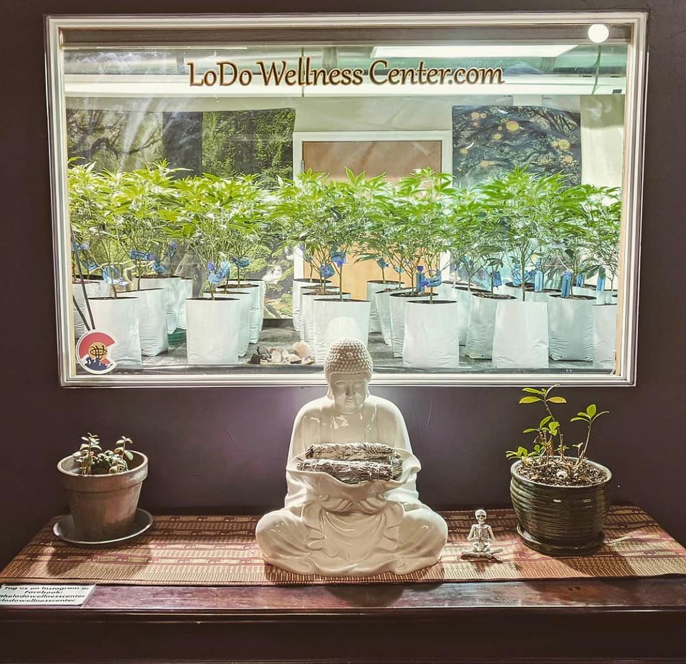 LoDo Wellness Center Denver, Colorado