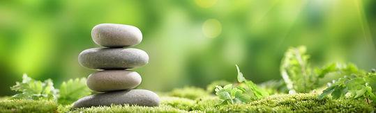 Oneness Naturopathy