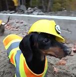 Construction digger.jpg
