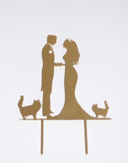 Bride & Groom with 2 Cats