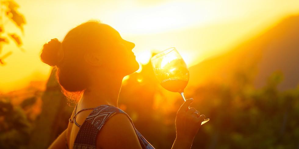 Dégustation des vins du domaine Attilon - Vins du pays d'Arles