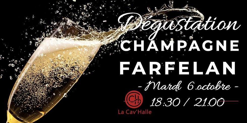 Dégustation - Champagne Farfelan