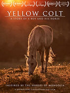 Yellow_Colt_poster_01.jpg