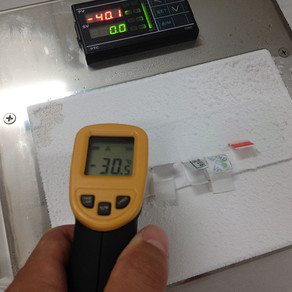 如何測試不同溫度下貼紙的膠性變化?