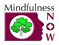 Mindfulness NOW Logo (2).jpg