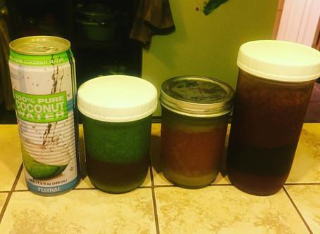 Juicy Juice Cleanse