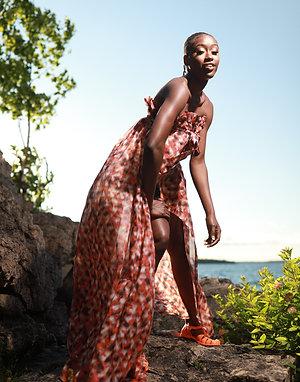 Peafowl Dress