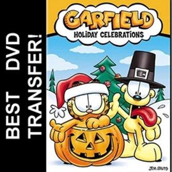 Garfield Holiday Celebrations DVD 2004