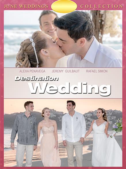 Destination Wedding (2017) DVD