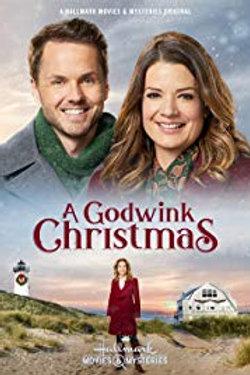 A Godwink Christmas DVD