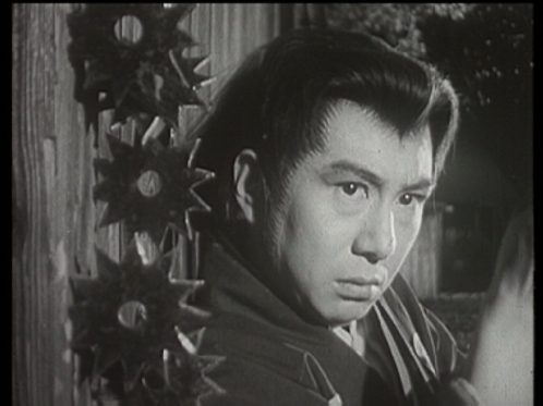 Shintaro The Samurai Seasons 1-10 Complete Set 35 DVD's