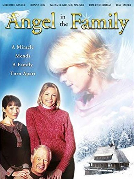 Angel in the Family 2004 DVD