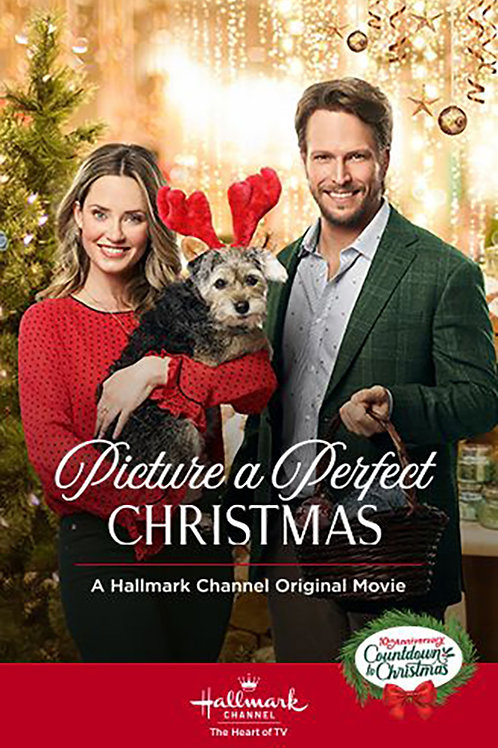 Picture a Perfect Christmas DVD