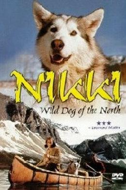 Nikki, Wild Dog of the North 1961 DVD