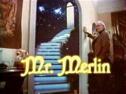 Mr. Merlin Complete Series on 4 DVD's