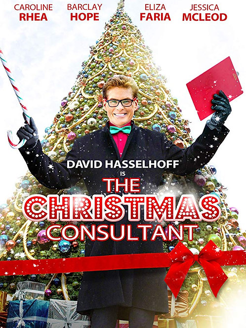 The Christmas Consultant 2012 DVD