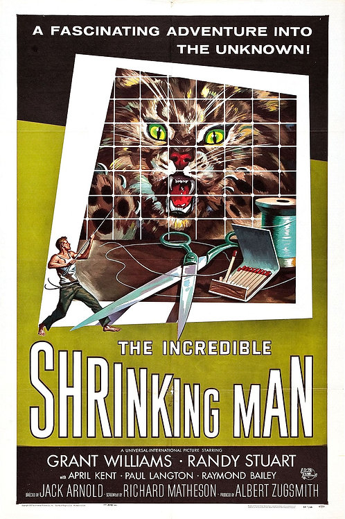 The Incredible Shrinking Man 1957 DVD